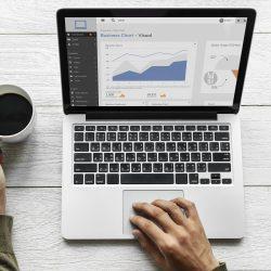 Digital Marketing Top Level Traffic